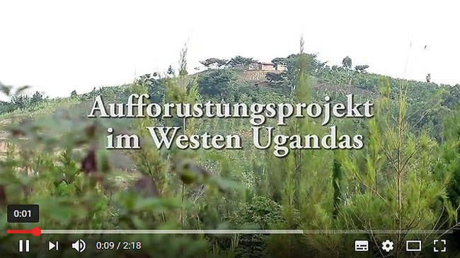 video aufforstung uganda