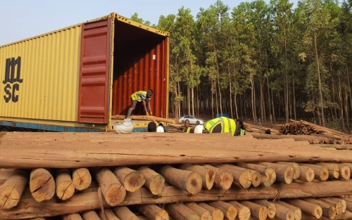 Coconut fuel for energy production in wood gas technology