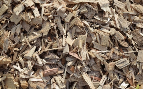 wood chips from forest residuals